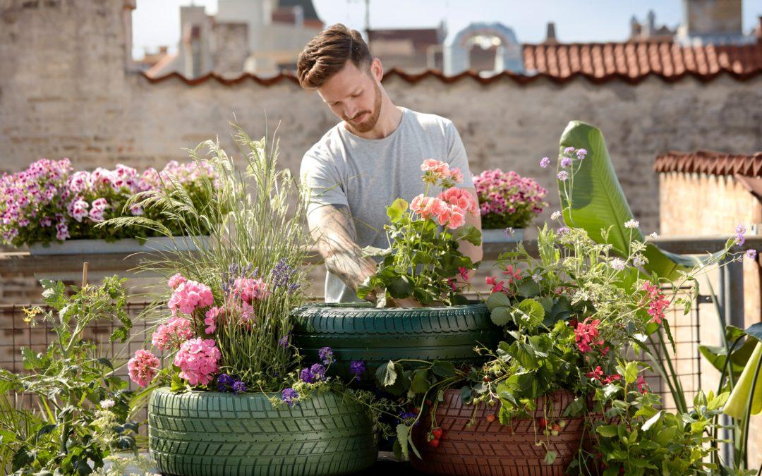 Best places for garden supplies in El Dorado Hills